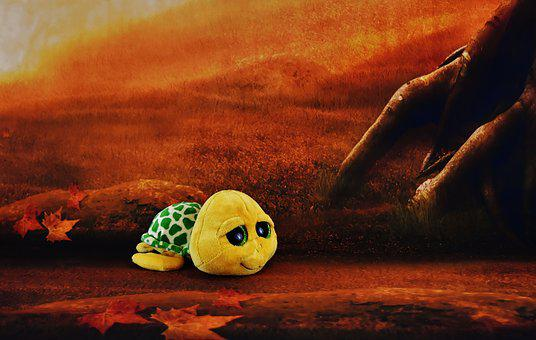 Turtle, Glitter Eyes, Forest, Soft Toy, Funny