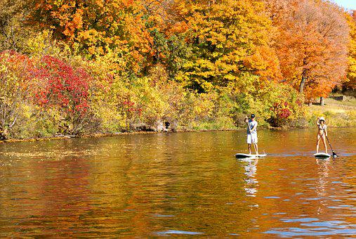 Stand Up Paddle, Sup, Paddleboard, Fun, Fitness