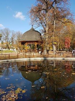 Reflections In Park, Autumn Landscape