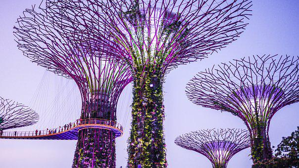 Singapore, Gardens By The Bay, Supertrees, Colorful
