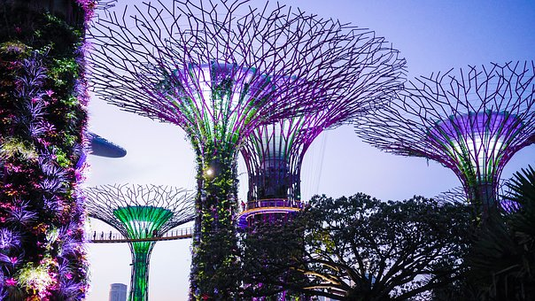 Singapore, Gardens By The Bay, Colorful, Attraction