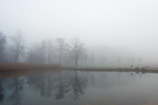 Stuttgart, Killesberg Park, Lake, Fog, Autumn