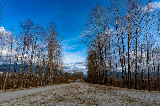 Trail, Port Coquitlam, British Columbia, Canada