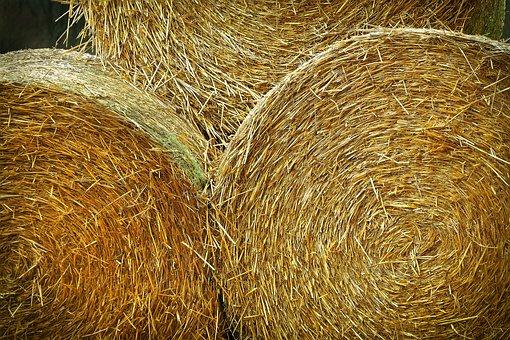 Landscape, Hay Bales, Agriculture, Harvest, Straw