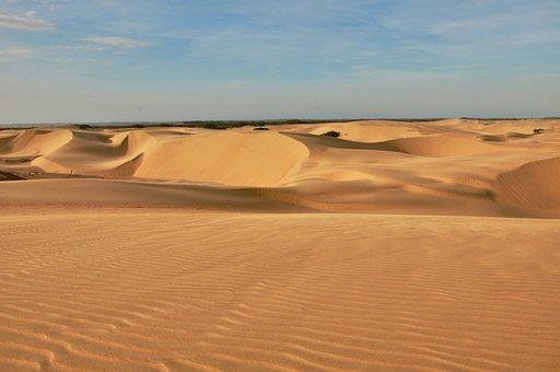 Adventure, Coro, Dunes, Falcon, Landscape, Medanos