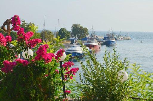 Bulgaria, Nessebar, Port, Flowers, Ships
