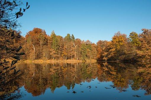 Stuttgart, Bear Lake, Nature, Autumn, Lake, Reflect