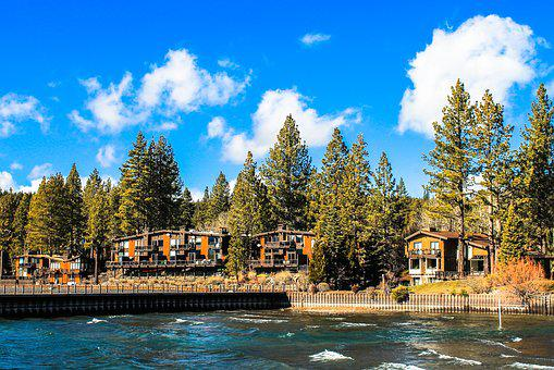 Tahoe, Lake, Usa, Lake Tahoe, Blue, Water, Trees