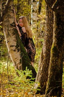 Autumn, Forest, Golden Autumn, Photo, Autumn Leaves