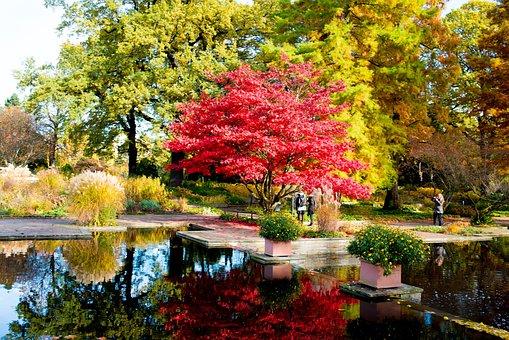 Hamburg, Park, Autumn Colours, Autumn