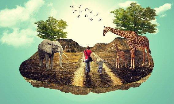 Landscapedesign, Photomanipulations, Digitalart, Art