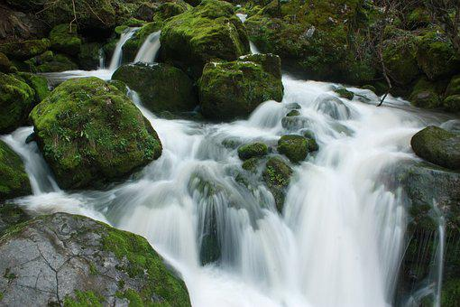 Waterfall, Milk Watter, Moss, Long Exposure, Stones