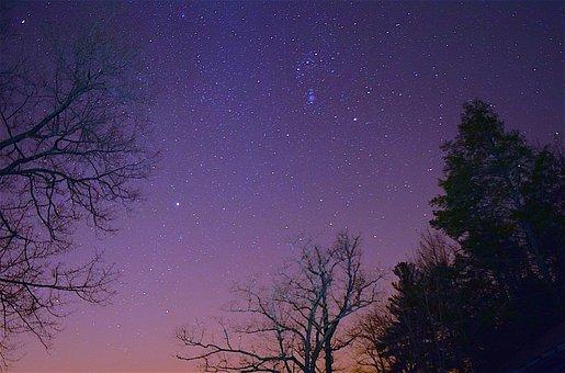 Stars, Night, Sky, Trees, Silhouette, Dark, Light
