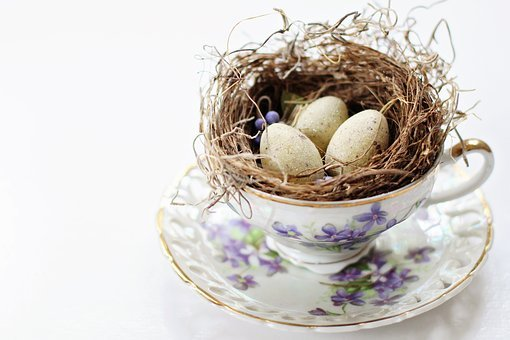Tea Cup, Vintage Tea Cup, Bird's Nest, Nest, Eggs