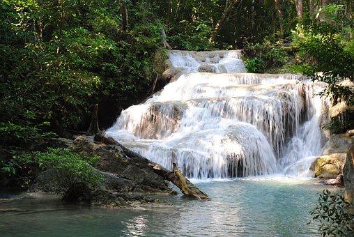 Waterfall, Jungle, Peaceful, Water, White, Landscape