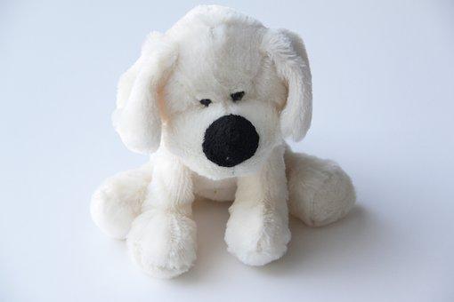 Toy, Dog, Stuffed Animal, Cute, Puppy, Plush, White