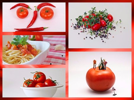 Collage, Tomatoes, Vegetables, Food, Frisch, Red, Eat