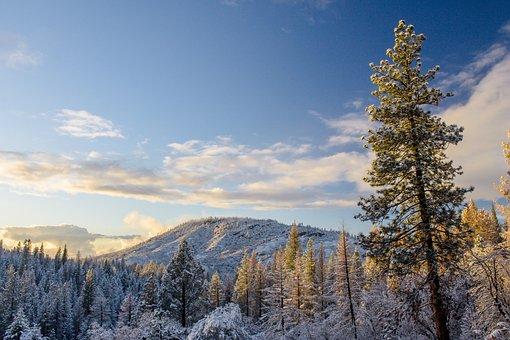 Yosemite, California, Park, National, Mountain, Valley