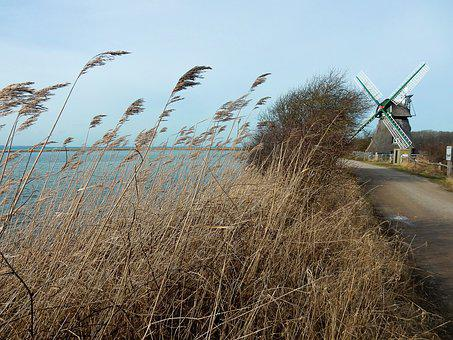 Geltinger Bakshi, Mill Charlotte, Reed, Baltic Sea