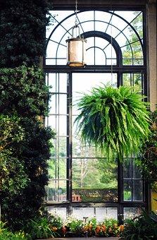 Longwood, Gardens, Window, Conservatory, Greenhouse