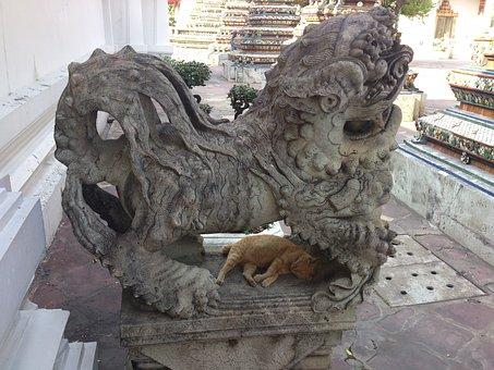 Statue, Thailand, Temple, Stone, Cat, Sleep, Bangkok