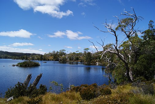 Lake, Cradle Mountain National Park, Hiking, Nature