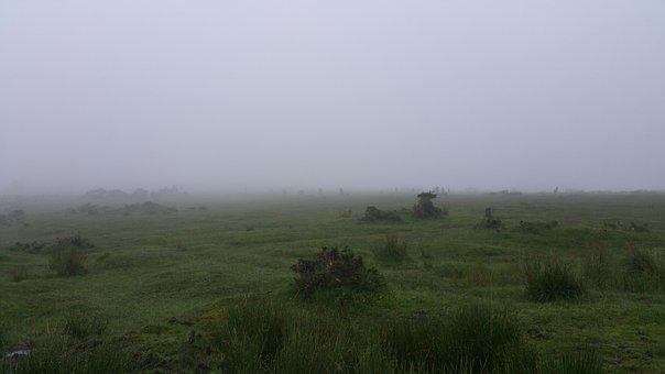 Bodmin Moor, Fog, Moor, Moody, Cornish, Windswept