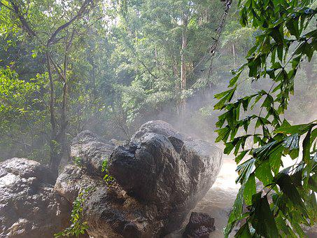 Jungle, Amzonas, Stone, Forest, Nature, Mystical, Rock