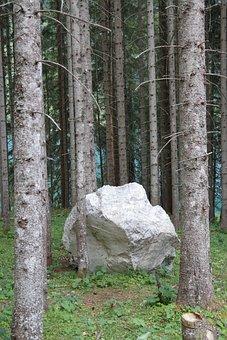 Rock, Stone, Boulder, Limestone, Forest, Fir Forest