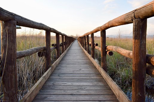 Wooden Footbridge, Footbridge, Wooden Bridge