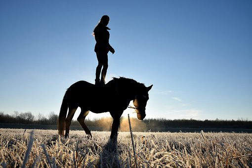 Person On A Horse, Horse, Reiter, Human, Silhouette