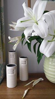 Lilies, Dead Flowers, Petal, Live, Love, Laugh