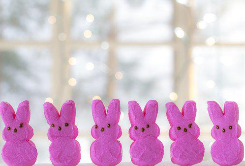 Easter, Bunny, Peeps, Pink Peeps, Bunnies, Candy, Treat