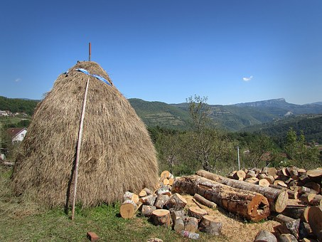 Bosnia And Herzegovina, Rama, Cloak, Village, Stump