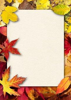 Autumn, Leaves, Colorful, Fall Foliage, Paper