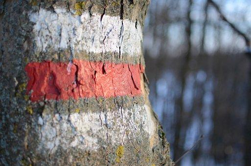 Mark, Round, Migratory Character, Waymarks, Tribe, Tree