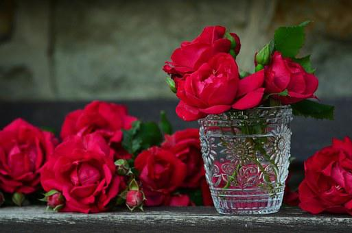 Roses, Red Roses, Bouquet Of Roses, Glass, Rose Bloom