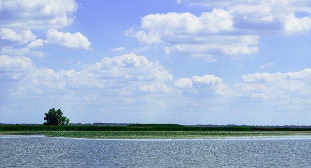 Tisza, Lake, Landscape, Poroszló, Reed, Cloud, Blue