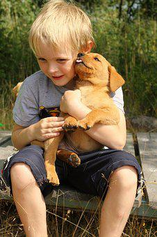 Friends, Child Hugs Dog, Children Holdin' Puppy