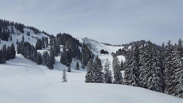 Great Ox-head, Allgäu, Gunzesrieder Valley, Winter