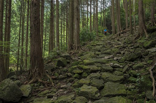 Landscape, Japan, Kumano Ancient Road, Iseji