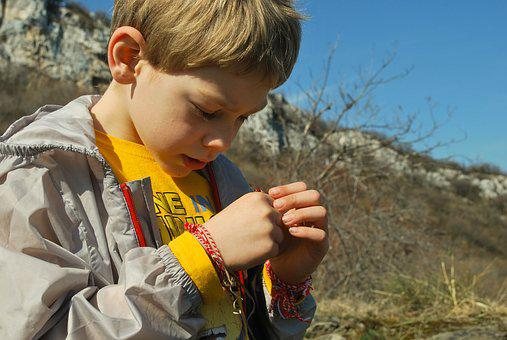 Boy, Ladybug, Observe, Learning, Nature, Happy, Outside