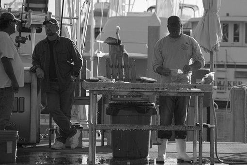 Fisherman, Florida, Sarasota, Fishing, Ocean, Sea