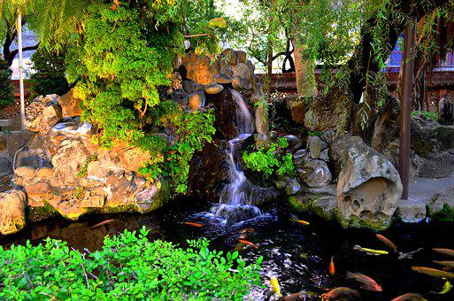 Pond, Koi, Waterfall, Nature, Garden, Park, Fresh, Zen