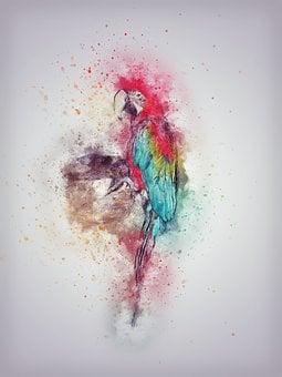 Parrot, Bird, Feathering, Art, Abstract, Vintage