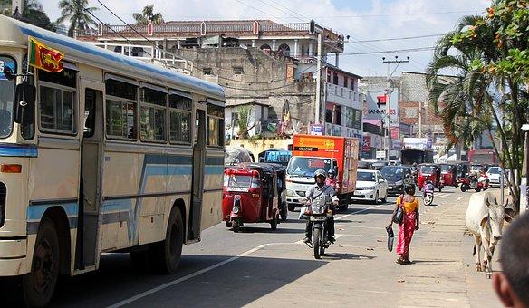 Sri Lanka, Road, Human, Traffic, Tuk Tuk, Auto, Bus