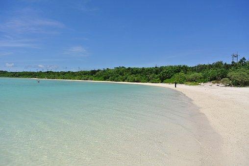 Sea, Blue Sky, Summer, Coast, Beach, South Island