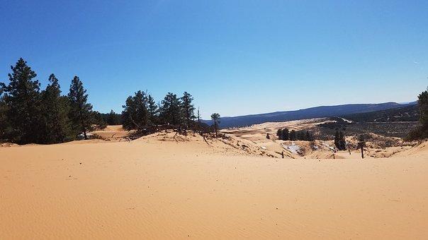 Sand Dunes, Utah, Scenery, Sand, Desert, Landscape