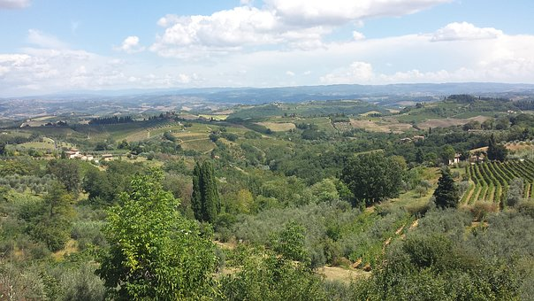 Saint Gimignano, Campaign, Green, Landscape, Nature