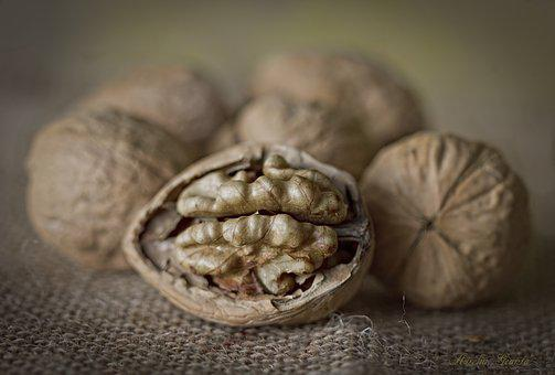 Nuts, Detail, Maron, Dried Fruits